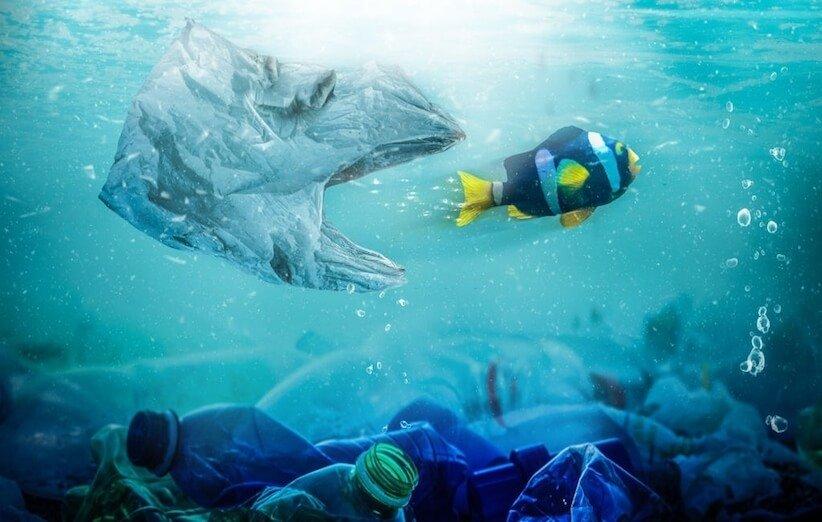 تاثیرات منفی آلودگیهای پلاستیکی بر اکوسیستم