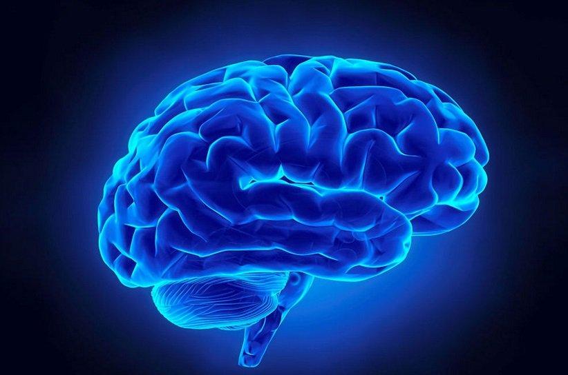 در هر لحظه، میلیونها یا حتی میلیاردها واکنش شیمیایی گوناگون در مغز رخ میدهند.