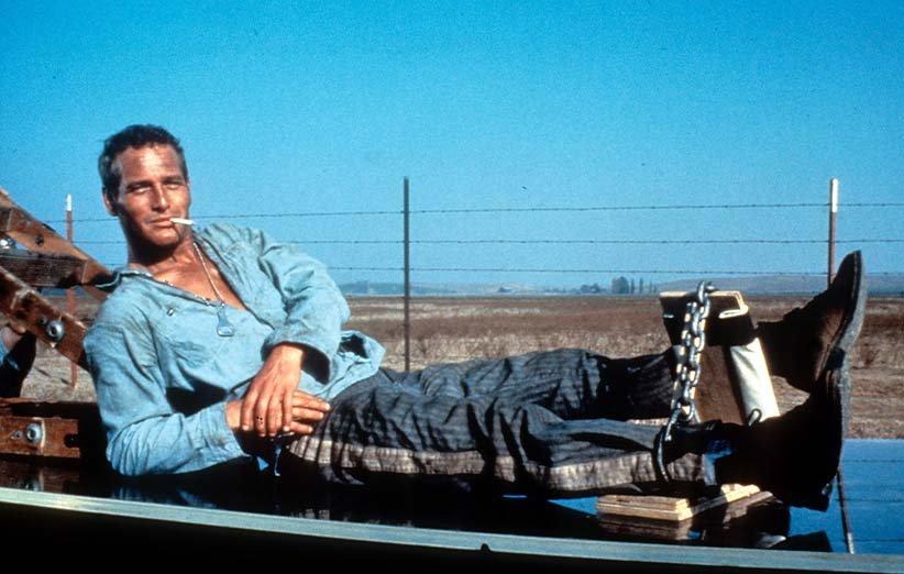 لوک خوشدست. ۱۹۶۷. پل نیومن