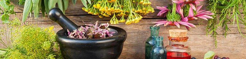 ۵ گیاه دارویی شگفتانگیز که هورمونهای بدن شما را متعادل میکنند