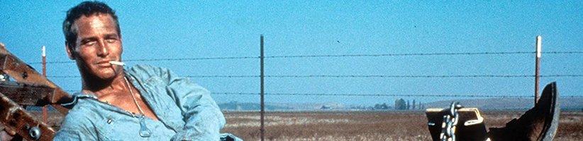 ۱۰ فیلم تماشایی پل نیومن؛ ستارهی بیتکرار سینمای جهان