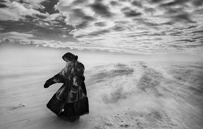 نمک زمین. مستند طبیعت .۲۰۱۴