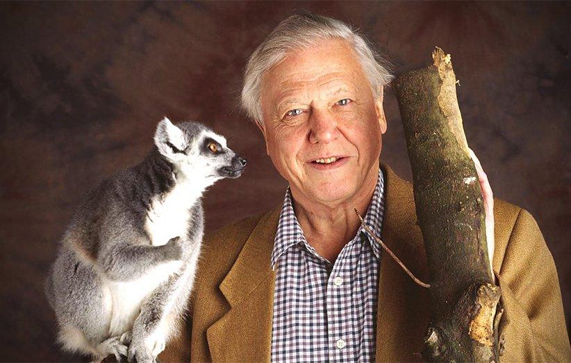 زدگی پستانداران. مستند طبیعت. ۲۰۰۲