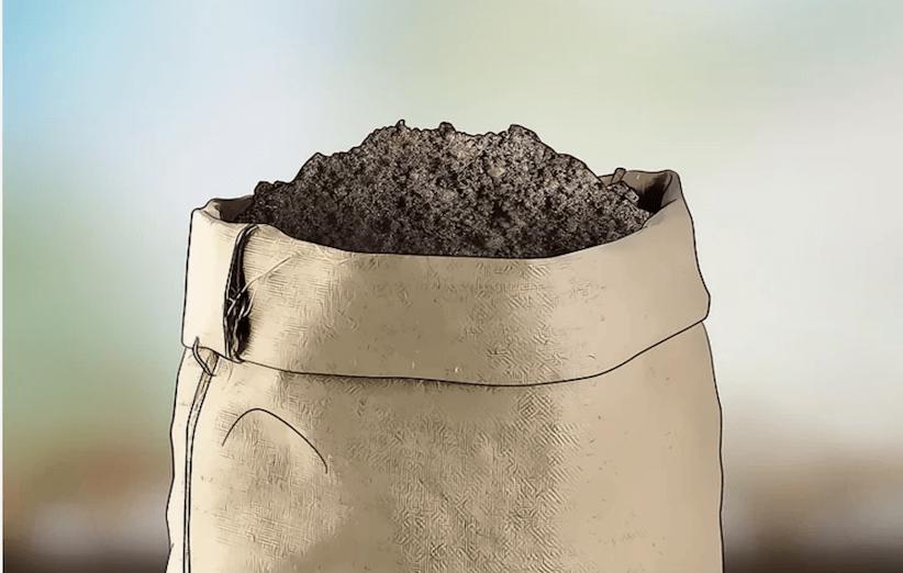 مرحلهی اول کاشت اسفناج: آمادهسازی گلدان