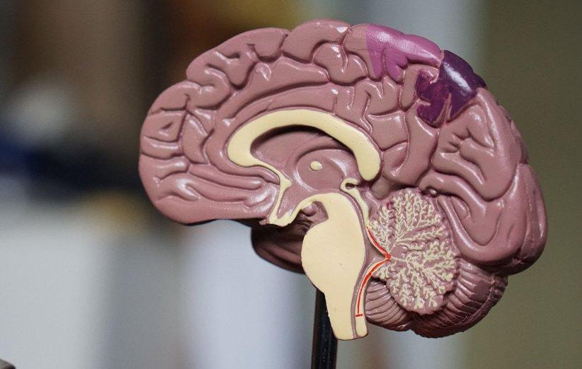 اختلالات مغزی علت استفراغ هستند