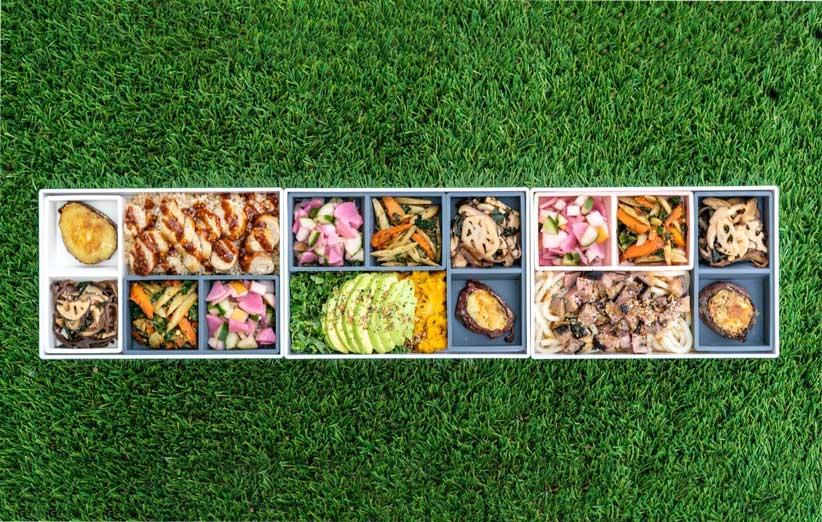 ظرف غذای ژاپنی بنتو چه ربطی به یک کسبوکار آنلاین دارد؟